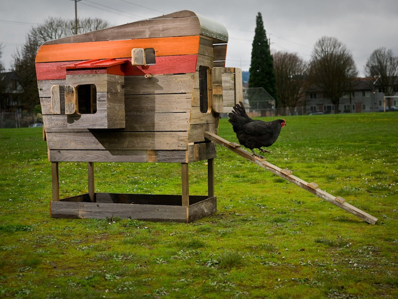 2013-march-april-1859-magazine-gardening-chicken-coop