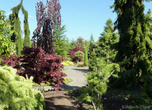 things-to-do-willamette-valley-silverton-oregon-garden