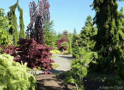 things-to-do-willamette-valley-silverton-oregon-garden