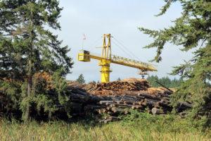 Lumber-Yard-at-Willamina