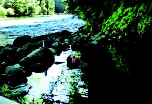 2010-Autumn-Oregon-Travel-Road-Trip-Willamette-Valley-McKenzie-River-man-in-small-natural-hot-spring