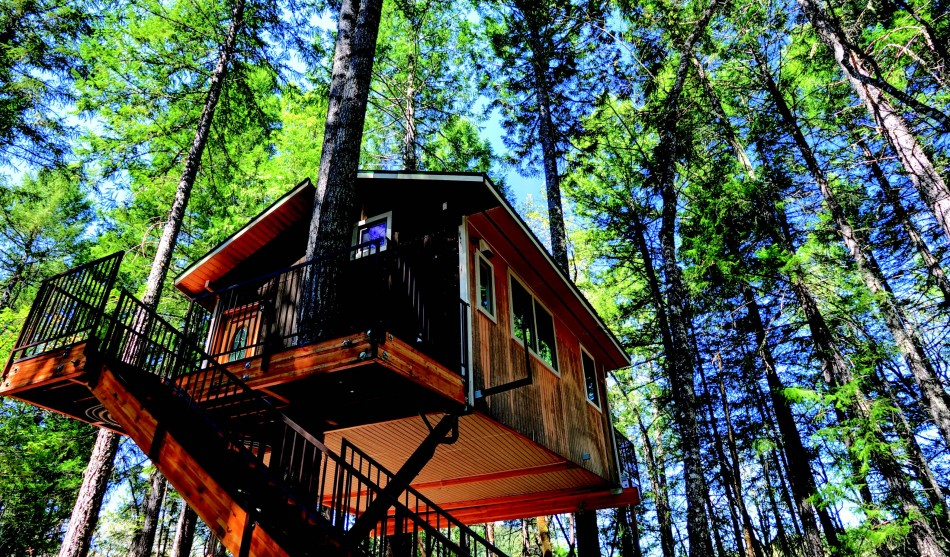 2010-Summer-Southern-Oregon-Home-Exterior-Design-Takilma-tree-house