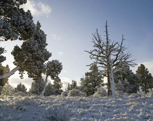 2010-Winter-Central-Oregon-Travel-Outdoors-Badlands-hike-winter-snow