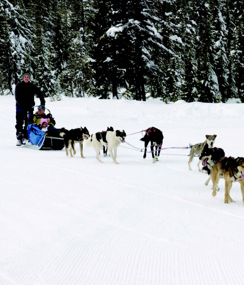 2010-Winter-Central-Oregon-Travel-Outdoors-Mt-Bachelor-dog-sledding-winter-snow
