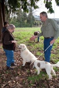 2011-Autumn-Oregon-Food-Willamette-Valley-Eugene-Truffle-Festival-truffle-hunting-with-dogs