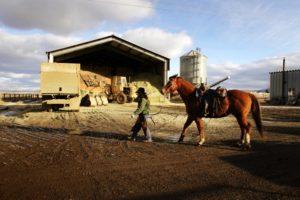 2011-Spring-Eastern-Oregon-Wallowas-McClaran-Ranch-Jill-McClaran-with-horse-in-tow