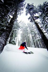 2011-Winter-Oregon-Adventures-Northern-Cascades-Mt-Hood-Meadows-Ski-Resort-skier
