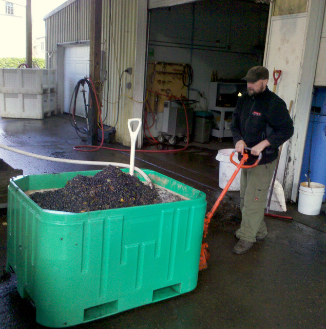 wine-crush-2011-Oregon-McMinnville-Vista-Hills-Panther-Creek-vineyards