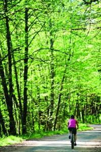 2012-july-august-oregon-columbia-river-gorge-mt-hood-72-hours-in-mt-hood-territory-hoodland-mountain-biking