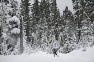 2012-november-december-1859-central-oregon-sno-park-adventures-skate-skier-into-woods