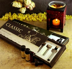 2012-november-december-1859-magazine-holiday-gift-guide-mountain-rose-herbs-classic-essential-oils-kit