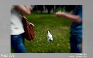 2012-portland-oregon-pdx-squared-joe-03