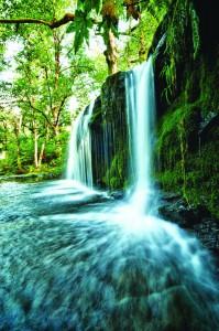 2012-september-october-1859-oregon-coast-salmon-river-headwaters-to-sea-annas-falls