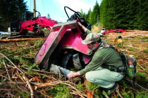2012-september-october-1859-oregon-coast-salmon-river-headwaters-to-sea-clear-cutting-forestry-logger