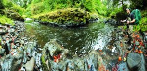 2012-september-october-1859-oregon-coast-salmon-river-headwaters-to-sea-gorge-near-highway-18