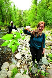 2012-september-october-1859-oregon-coast-salmon-river-headwaters-to-sea-katie-brem-plant-specialist-invasive-plant