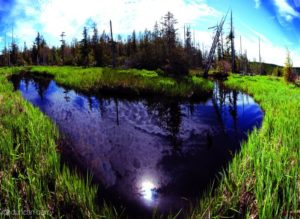 2012-september-october-1859-oregon-coast-salmon-river-headwaters-to-sea-lost-prarie