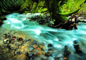 2012-september-october-1859-oregon-coast-salmon-river-headwaters-to-sea-upper-reaches-river-rocks