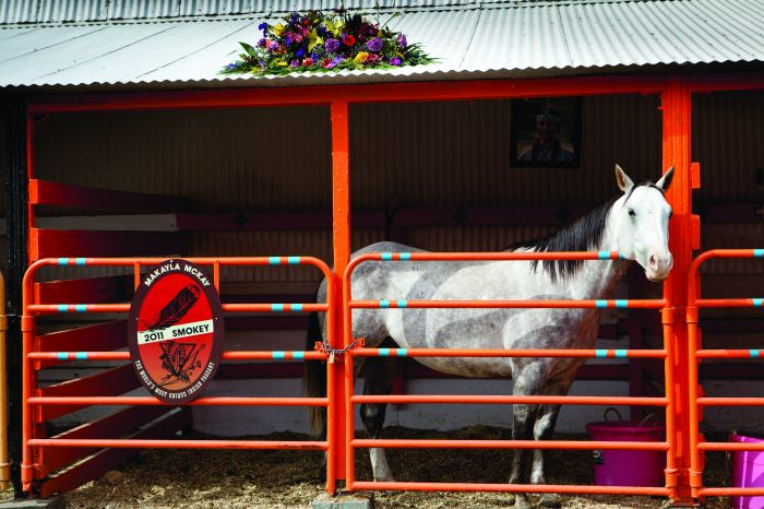 july-august-2012-1859-eastern-oregon-pendleton-rodeo-history-pony-at-pendleton-round-up