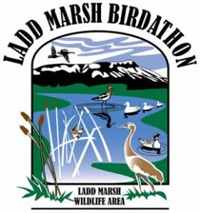 ladd-marsh-birdathon-eastern-oregon-educational