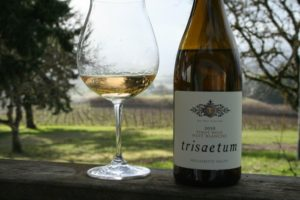 oregon-wine-blog-willamette-valley-pinot-blanc-de-noir-trisaetum