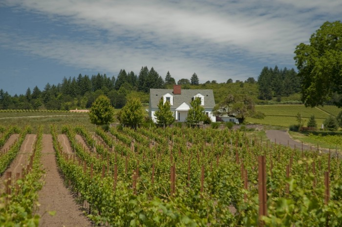 stoller-vineyards-lodging-willamette-valley-oregon-wine