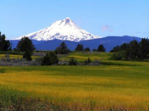 summer-2012-columbia-gorge-mt-hood-road-reconsidered-highway-197-maupin-dalles-tygh-valley-east-hood-and-fields