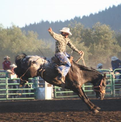 things-to-do-oregon-eastern-rodeo-elgin-stampede-oregon