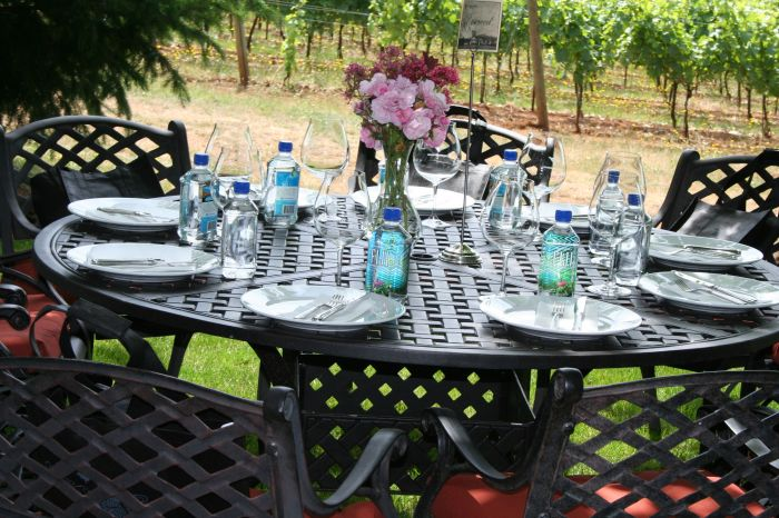 wine-tasting-tours-willamette-valley-oregon-france-food-dining-grapes-4