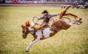 1859-magazine-summer-2012-eastern-oregon-pendleton-round-up-bill-purcell-bucking-bronco-rider