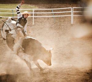 1859-magazine-summer-2012-eastern-oregon-pendleton-round-up-constance-spurling-bull-rider