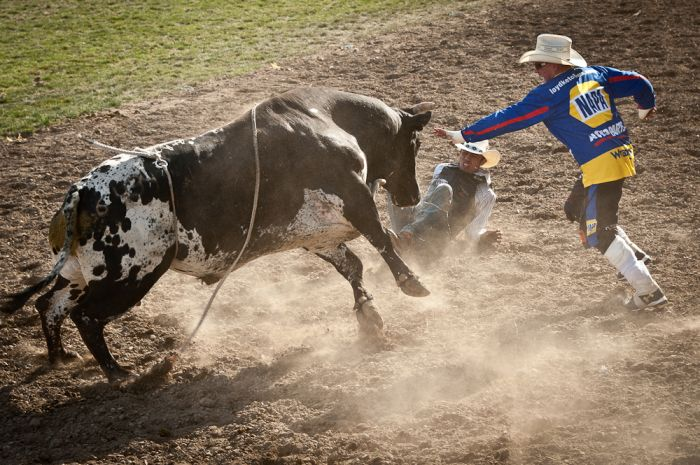 1859-magazine-summer-2012-eastern-oregon-pendleton-round-up-constance-spurling-rodeo-clown-bull-rider