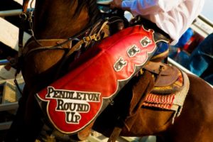 1859-magazine-summer-2012-eastern-oregon-pendleton-round-up-joni-kabana-pendleton-chaps