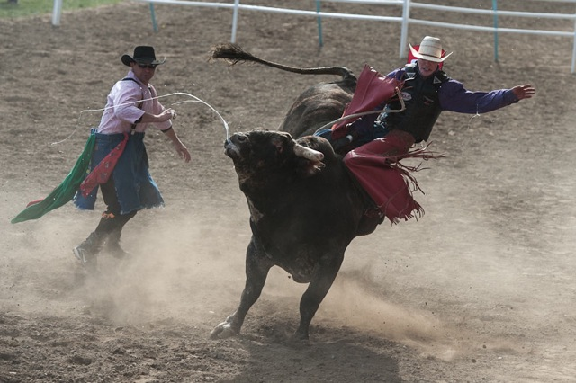 1859-magazine-summer-2012-pendleton-round-up-raina-stinson-bull-rider