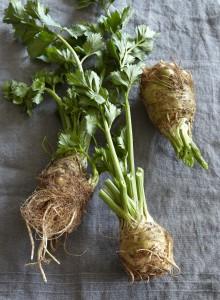 1859-root-vegetable-pear-recipe-celery-root-roots-cookbook