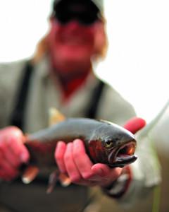2009-Summer-Central-Oregon-Travel-Deschutes-River-fly-fishing