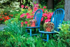 2010-Summer-1859-home-design-backyard-remodel-secondhand-chairs-with-plants