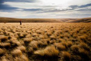 2013-january-february-1859-magazine-gorge-mt-hood-oregon-the-dalles-outdoor-adventures-upland-bird-hunt-hunter-walks-in-condon