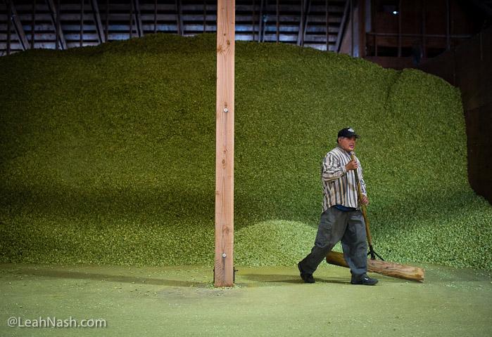 2013-november-december-1859-magazine-willamette-valley-oregon-hops-beer-goschie-farms-storing-hops