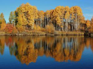 1859-oregons-birthday-photo-contest-central-oregon-autumn-on-the-deschutes-river-brenda-reid-irwin