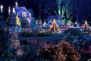 1859-oregons-birthday-photo-contest-oregon-coast-christmas-lights-coos-bay-cynthia-kuettle