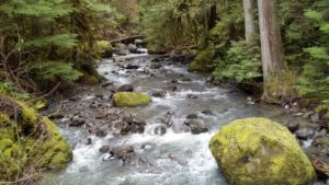 1859-oregons-birthday-photo-contest-willamette-valley-douglas-county-deer-leap-trail-creek-kathy-chamberlain