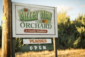 1859_July_August_Jared_Cruce_Valley_View_Peaches_12
