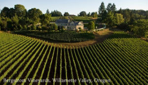 2007-Oregon-Willamette-Valley-Bergstrom-Vineyards-aerial-view-by-Andrea-Johnson
