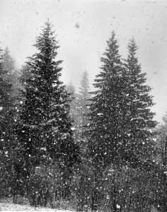 2012-november-december-1859-magazine-oregon-winter-ray-atkeson-gallery-let-it-snow