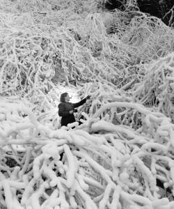 2012-november-december-1859-magazine-oregon-winter-ray-atkeson-gallery-mira-web-of-snow