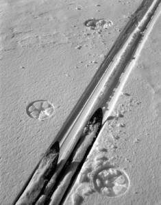2012-november-december-1859-magazine-oregon-winter-ray-atkeson-gallery-skis-and-tracks