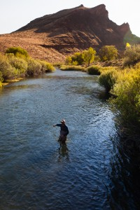 2013-July-August-Oregon-Fish-Oregon-Rivers-Tyler-Roemer-Fly-Fishing-Side-View-Fishing