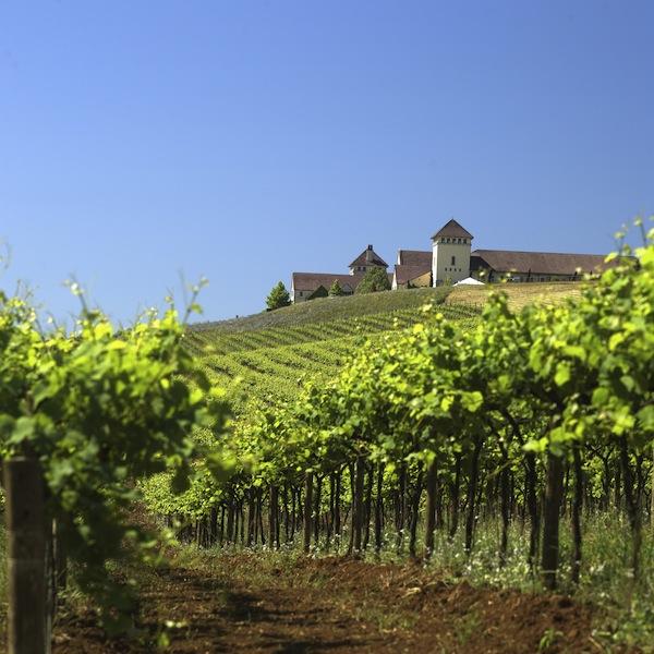 2013-january-february-1859-magazine-best-of-oregon-willamette-valley-best-winery-king-estate-runner-up