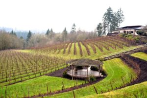 2013-march-april-1859-magazine-willamette-valley-oregon-from-where-i-stand-gaston-cove-vineyard
